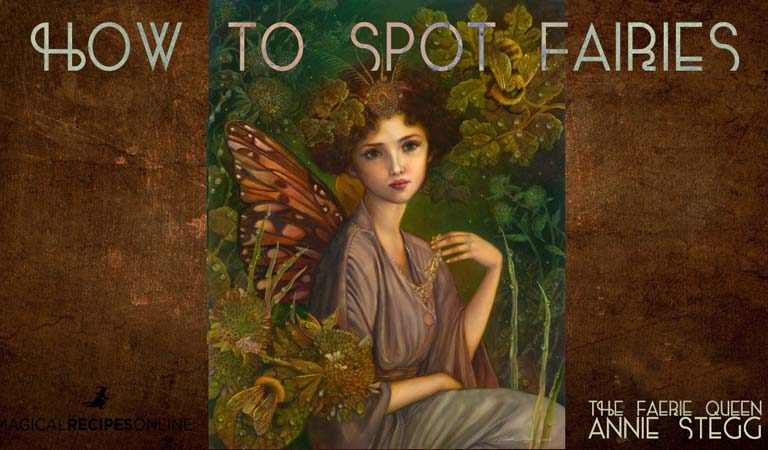 Interesting: How to spot Fairies? 12 signs when Fairies are near you