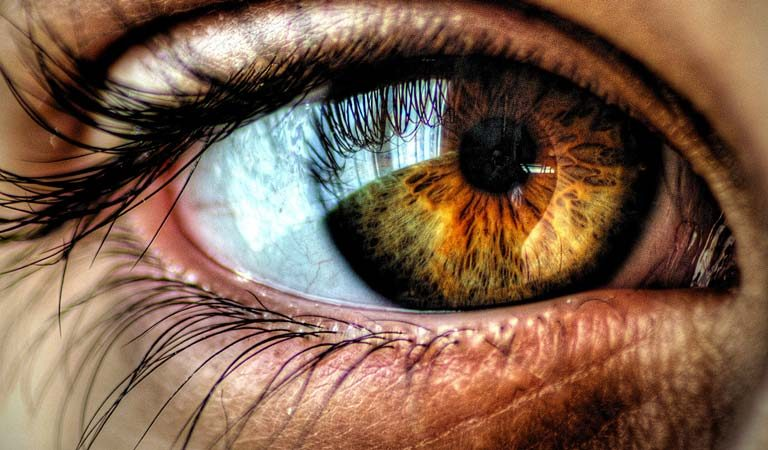 Your Eye Color Reveals A Lot About You According To Scientists