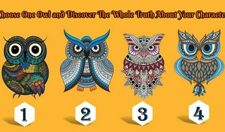 TEST: Discover the Whole Truth About Your Character From These Four Lovely Owls!