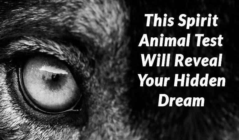 TEST: This Spirit Animal Test Will Reveal Your Hidden Dream